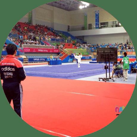National Coach Wushu The Netherlands